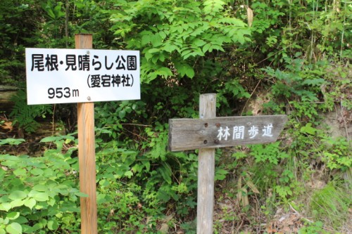 There is a hiking course of 30 minutes to 2 hours.