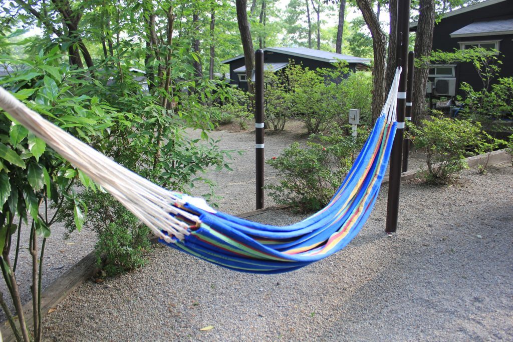 You can hang a hammock in all of the camp site.